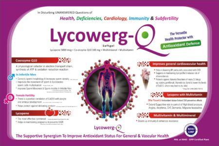 Lycowerg-Q