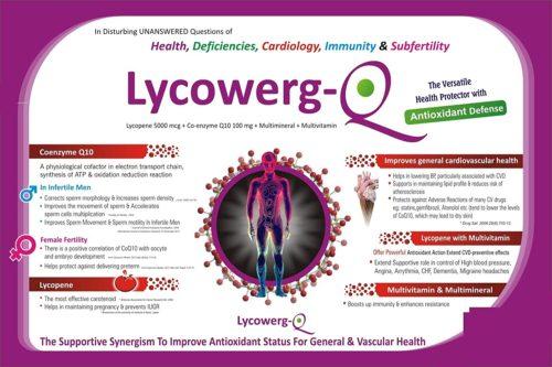 lycowerg3